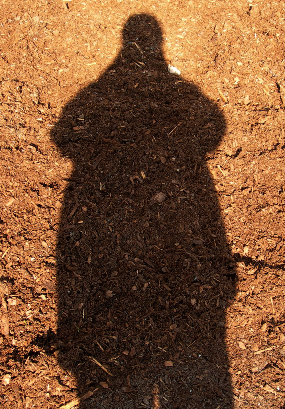 Shadow_self_portrait