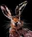 Hare dekonstruction