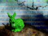 alien easter bunny brainwave 3
