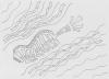 juusola-doodles-01-07-97